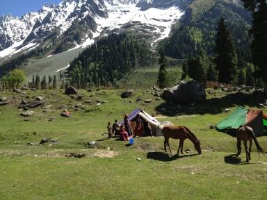 KashmirGypsies