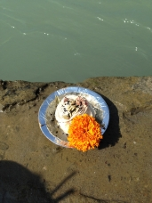 offerings